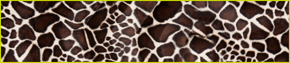 The Giraffe Theory